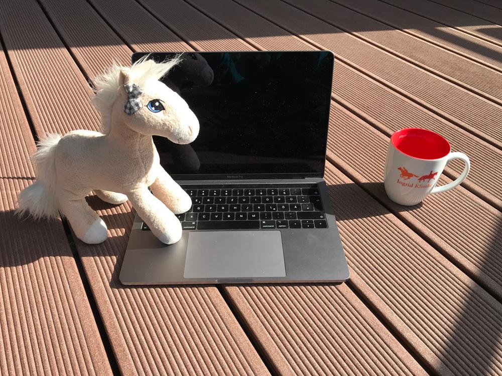 Online_Training_Unterricht_Reiten_Pferde